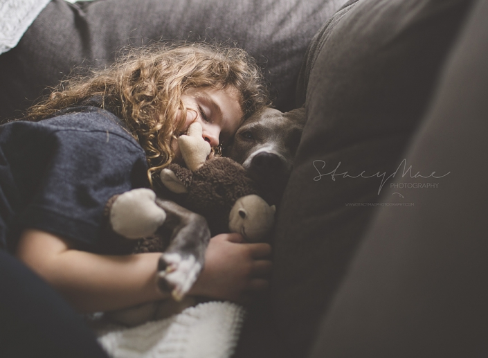 little girl and pitbull playing
