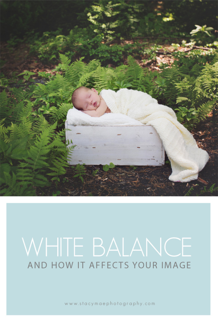 How White Balance Affects Your Image Photography Tips